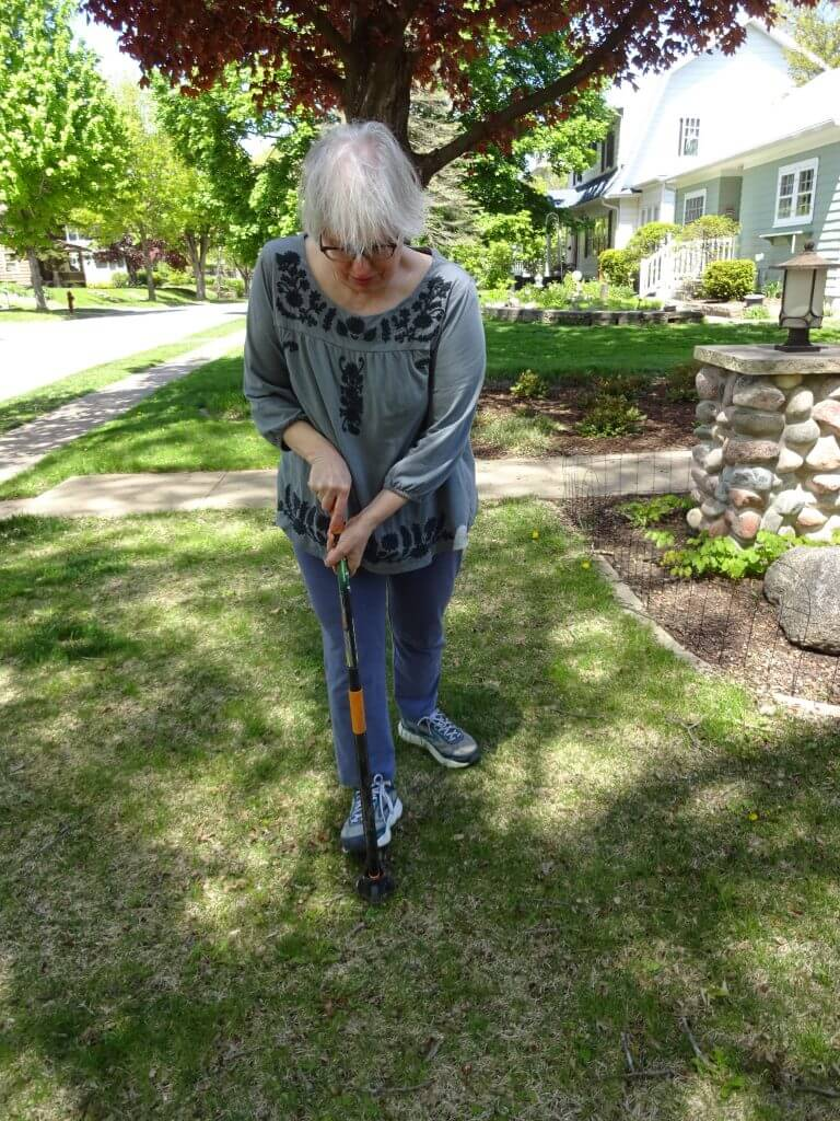 The Best Weeders For Gardening Without Bending Over